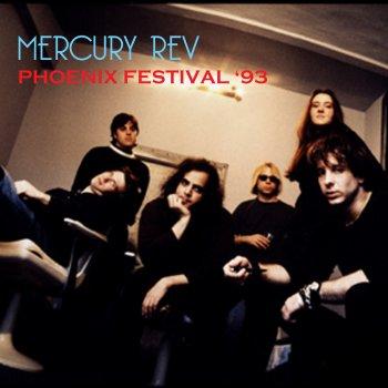 Testi Phoenix Festival '93