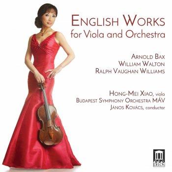 Testi English Works for Viola & Orchestra