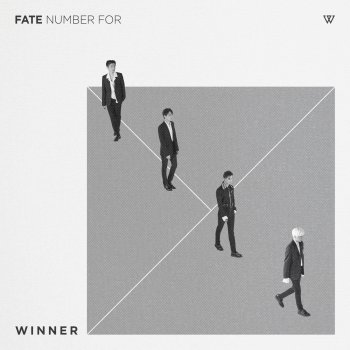 Testi FATE NUMBER FOR -KR EDITION-