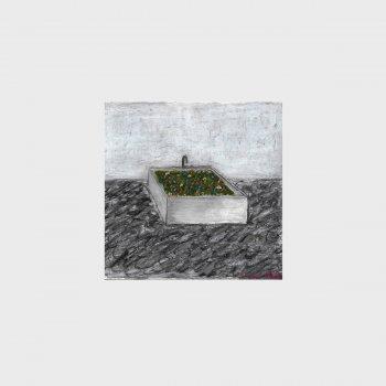 Testi Bath