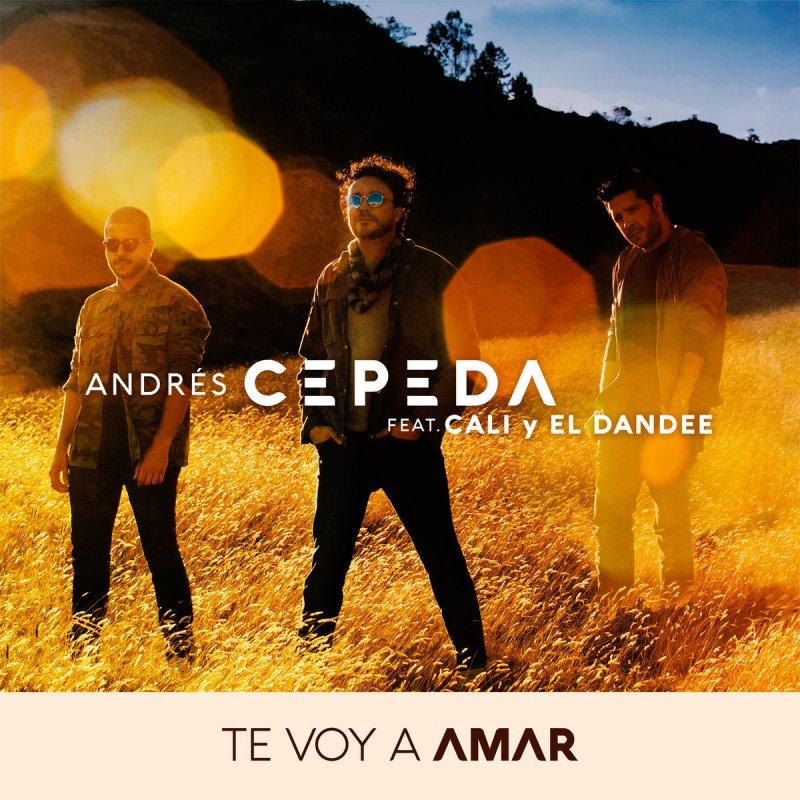 Letra De Te Voy A Amar De Andrés Cepeda Feat Cali Y El