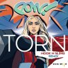 Torn (Hook N Sling Remix)