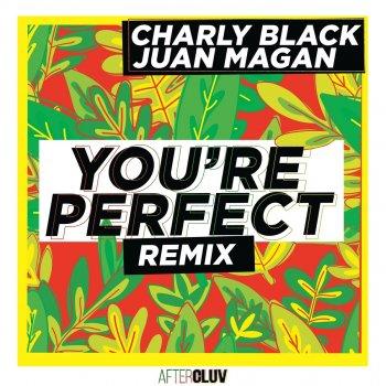 Testi You're Perfect (Remix)