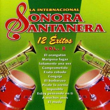 Testi 12 Éxitos la Internacional Sonora Santanera, Vol. 3
