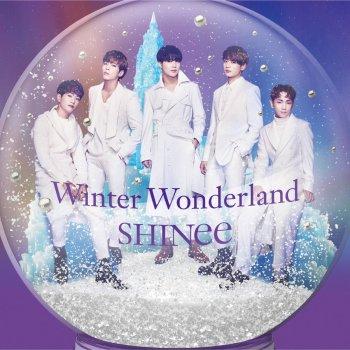 Testi Winter Wonderland