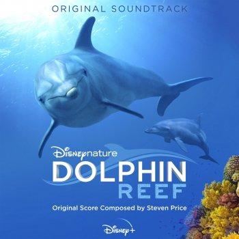 Testi Dolphin Reef (Original Soundtrack)