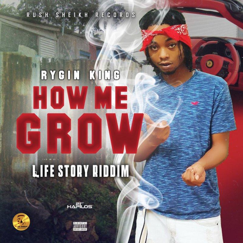 Rygin King How Me Grow Lyrics Musixmatch