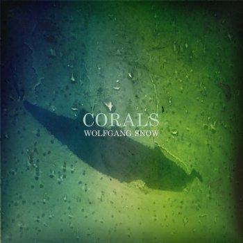 Testi Corals