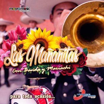 Testi Las Mañanitas Con Banda y Mariachi Para Toda Ocasión