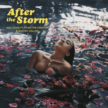 Testi After The Storm (feat. Tyler, The Creator & Bootsy Collins)