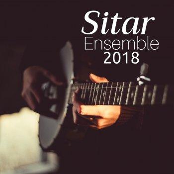 Testi Sitar Ensemble 2018 - Relaxing Indian Music