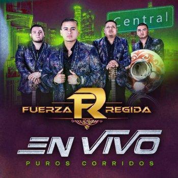Radicamos En South Central by Fuerza Regida - cover art