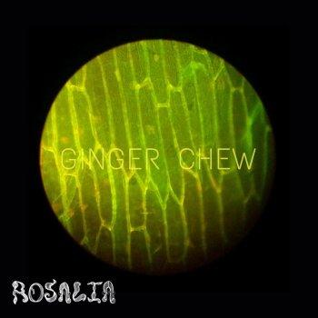Testi Ginger Chew