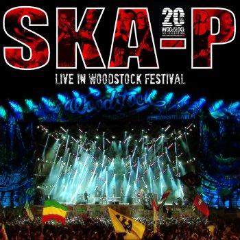 Testi Live In Woodstock Festival