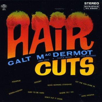 Testi Haircuts