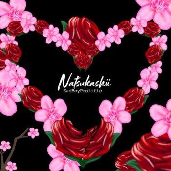 Testi Natsukashii