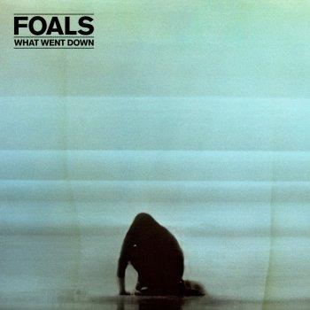 Albatross (Lake Turner Remix)                                                     by Foals – cover art