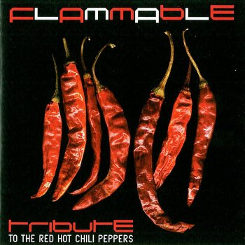 Flammable: Tribute to the Red Hot Chili Peppers Scar Tissue - lyrics