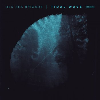 Testi Tidal Wave (Acoustic)