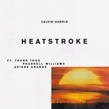 Testi Heatstroke