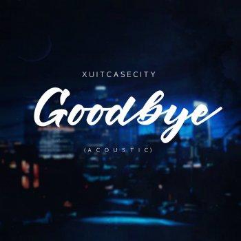 Testi Goodbye (Acoustic)