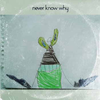 Testi Never Know Why - Single