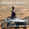 Mesh Taye' lyrics – album cover
