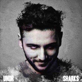 Testi Sharks