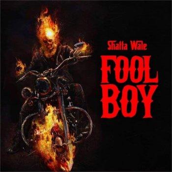 Testi Fool Boy