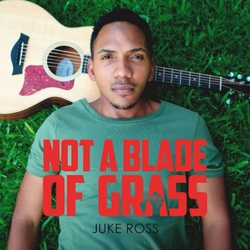 Testi Not a Blade of Grass