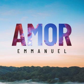 Testi Amor - Single