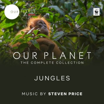"""Testi Jungles (Episode 3 / Soundtrack From The Netflix Original Series """"Our Planet"""")"""