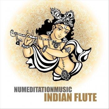 Testi Indian Flute