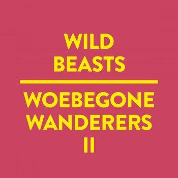 Testi Woebegone Wanderers II