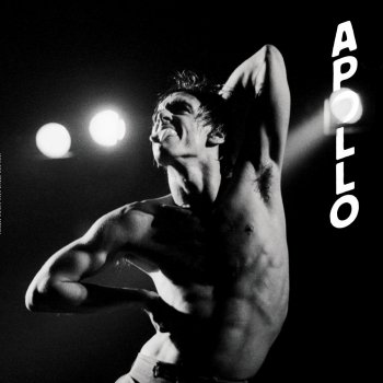 Testi Apollo