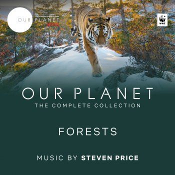 """Testi Forests (Episode 8 / Soundtrack From The Netflix Original Series """"Our Planet"""")"""