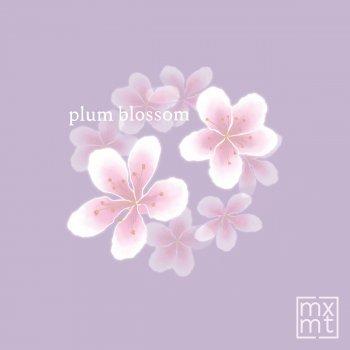 Testi plum blossum