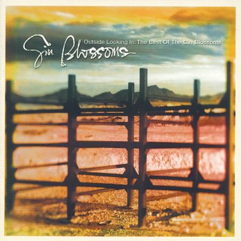 Testi Outside Looking In: The Best Of The Gin Blossoms