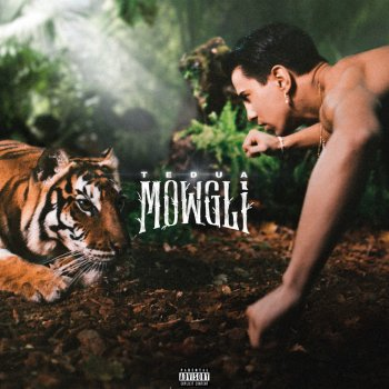 Testi Mowgli