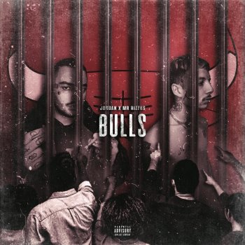 Testi Bulls