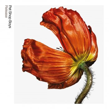 Testi Release: Further Listening 2001 - 2004