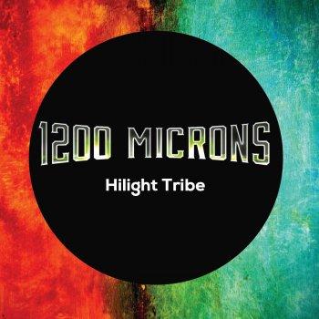 Testi Hilight Tribe