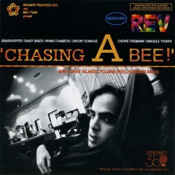 Testi Chasing a Bee