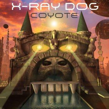 Testi Coyote