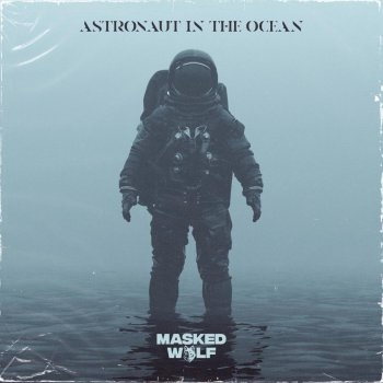 Testi Astronaut In the Ocean