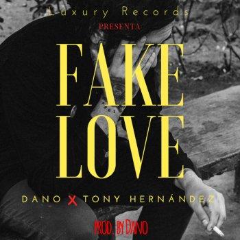 Testi Fake Love (with Dano)