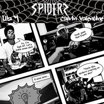 Testi Spiders