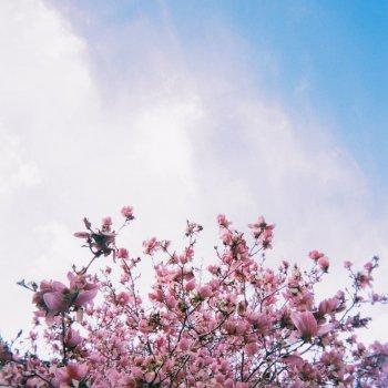 Good Days By Keshi Album Lyrics Musixmatch Song Lyrics And