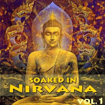 Testi Soaked In Nirvana, Vol.1