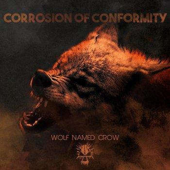 Testi Wolf Named Crow